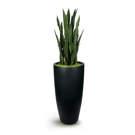 Plante artificielle et pot