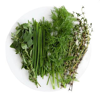 Paquets de semences(origano, thym, ciboulette, aneth)