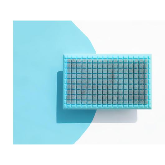 Oreiller en mousse à cellules Blu Sleep Products
